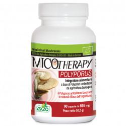 Micotherapy Polyporus
